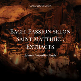Bach: Passion selon Saint Matthieu, Extracts