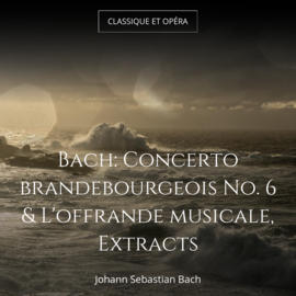 Bach: Concerto brandebourgeois No. 6 & L'offrande musicale, Extracts