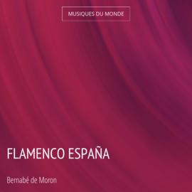 Flamenco España