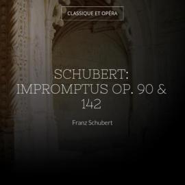 Schubert: Impromptus Op. 90 & 142