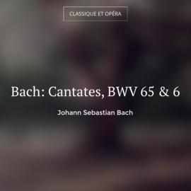 Bach: Cantates, BWV 65 & 6