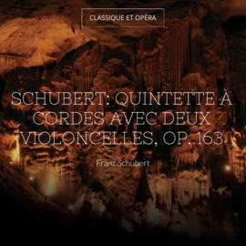 Quintette à cordes in C Major, Op. 163, D. 956: I. Allegro ma non troppo in C Major, Op. 163, D. 956: I. Allegro ma non troppo