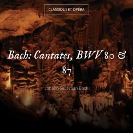 Bach: Cantates, BWV 80 & 87