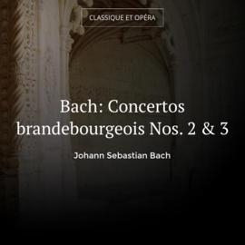 Bach: Concertos brandebourgeois Nos. 2 & 3