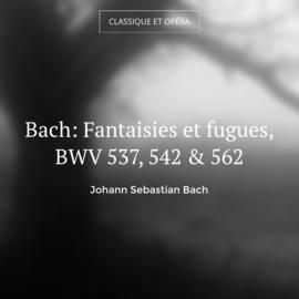 Bach: Fantaisies et fugues, BWV 537, 542 & 562