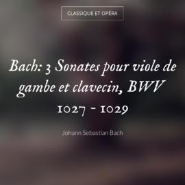 Bach: 3 Sonates pour viole de gambe et clavecin, BWV 1027 - 1029