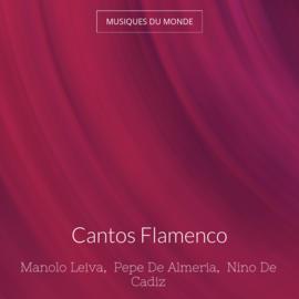 Cantos Flamenco