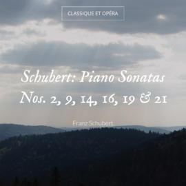 Schubert: Piano Sonatas Nos. 2, 9, 14, 16, 19 & 21