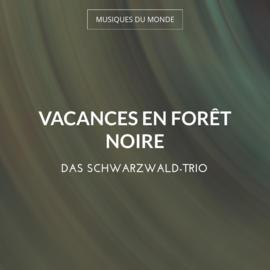 Vacances en Forêt Noire
