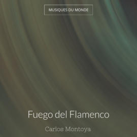 Fuego del Flamenco