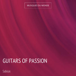 Guitars of Passion