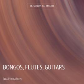 Bongos, Flutes, Guitars