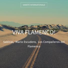 Viva Flamenco!