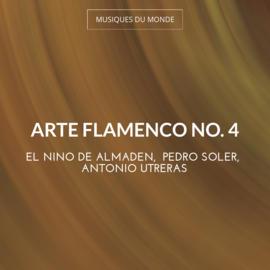 Arte Flamenco No. 4