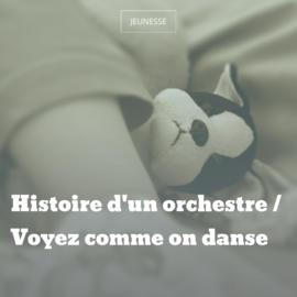 Histoire d'un orchestre / Voyez comme on danse
