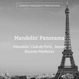Mandolin' Panorama