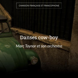 Danses cow-boy