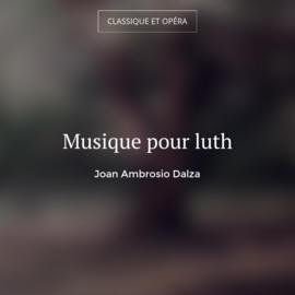 Musique pour luth