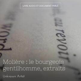 Molière : le bourgeois gentilhomme, extraits