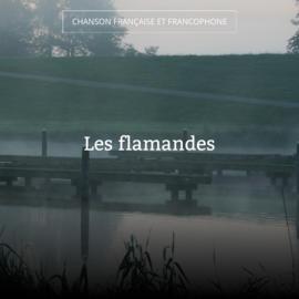Les flamandes