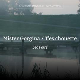 Mister Gorgina / T'es chouette