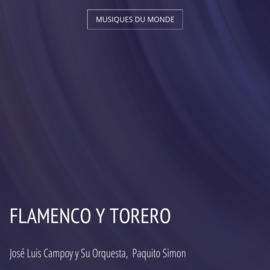 Flamenco y Torero