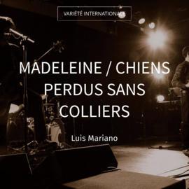 Madeleine / Chiens perdus sans colliers