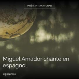 Miguel Amador chante en espagnol