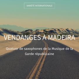 Vendanges à Madeira