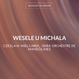 Wesele U Michala