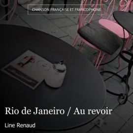 Rio de Janeiro / Au revoir