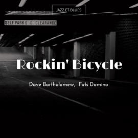 Rockin' Bicycle