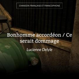 Bonhomme accordéon / Ce serait dommage