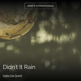 Didn't It Rain