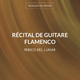 Récital de guitare flamenco
