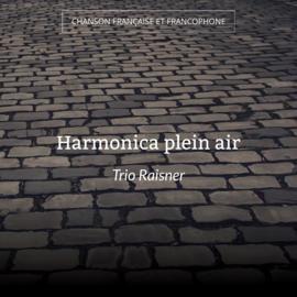 Harmonica plein air