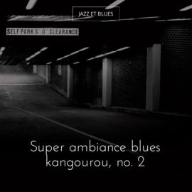 Super ambiance blues kangourou, no. 2