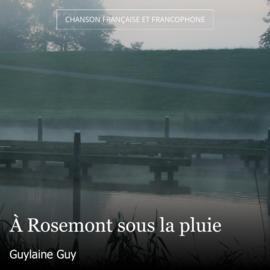 À Rosemont sous la pluie
