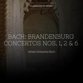 Bach: Brandenburg Concertos Nos. 1, 2 & 6