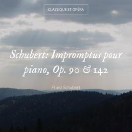 Schubert: Impromptus pour piano, Op. 90 & 142
