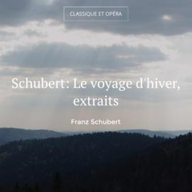 Schubert: Le voyage d'hiver, extraits