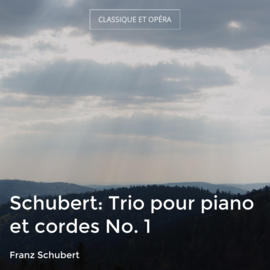 Schubert: Trio pour piano et cordes No. 1