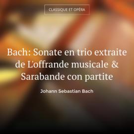 Bach: Sonate en trio extraite de L'offrande musicale & Sarabande con partite