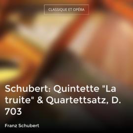 "Schubert: Quintette ""La truite"" & Quartettsatz, D. 703"