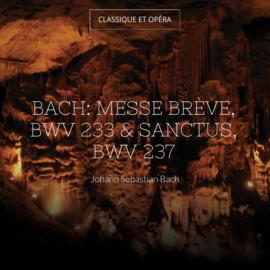 Bach: Messe brève, BWV 233 & Sanctus, BWV 237