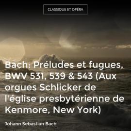 Bach: Préludes et fugues, BWV 531, 539 & 543 (Aux orgues Schlicker de l'église presbytérienne de Kenmore, New York)