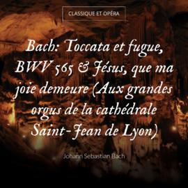 Bach: Toccata et fugue, BWV 565 & Jésus, que ma joie demeure (Aux grandes orgus de la cathédrale Saint-Jean de Lyon)