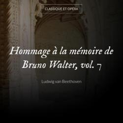 Hommage à la mémoire de Bruno Walter, vol. 7