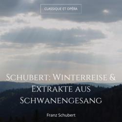 Schubert: Winterreise & Extrakte aus Schwanengesang