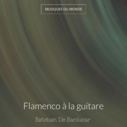 Flamenco à la guitare